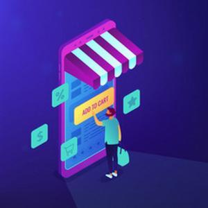 Erp integrado com loja virtual